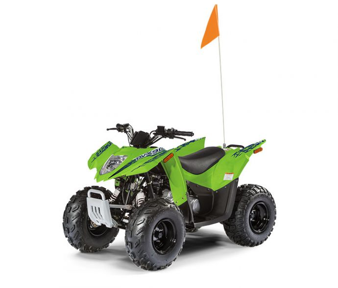 Arctic Cat Alterra DVX 90 2019
