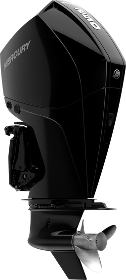 Mercury 250 L DTS